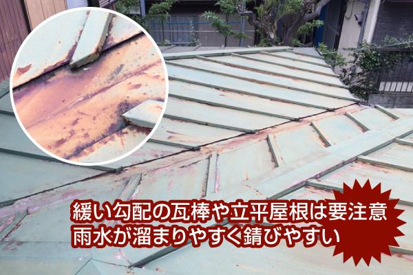 緩い勾配の瓦棒や立平屋根は雨水が溜まりやすく錆びやすいため要注意