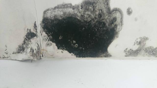 天井の汚れ