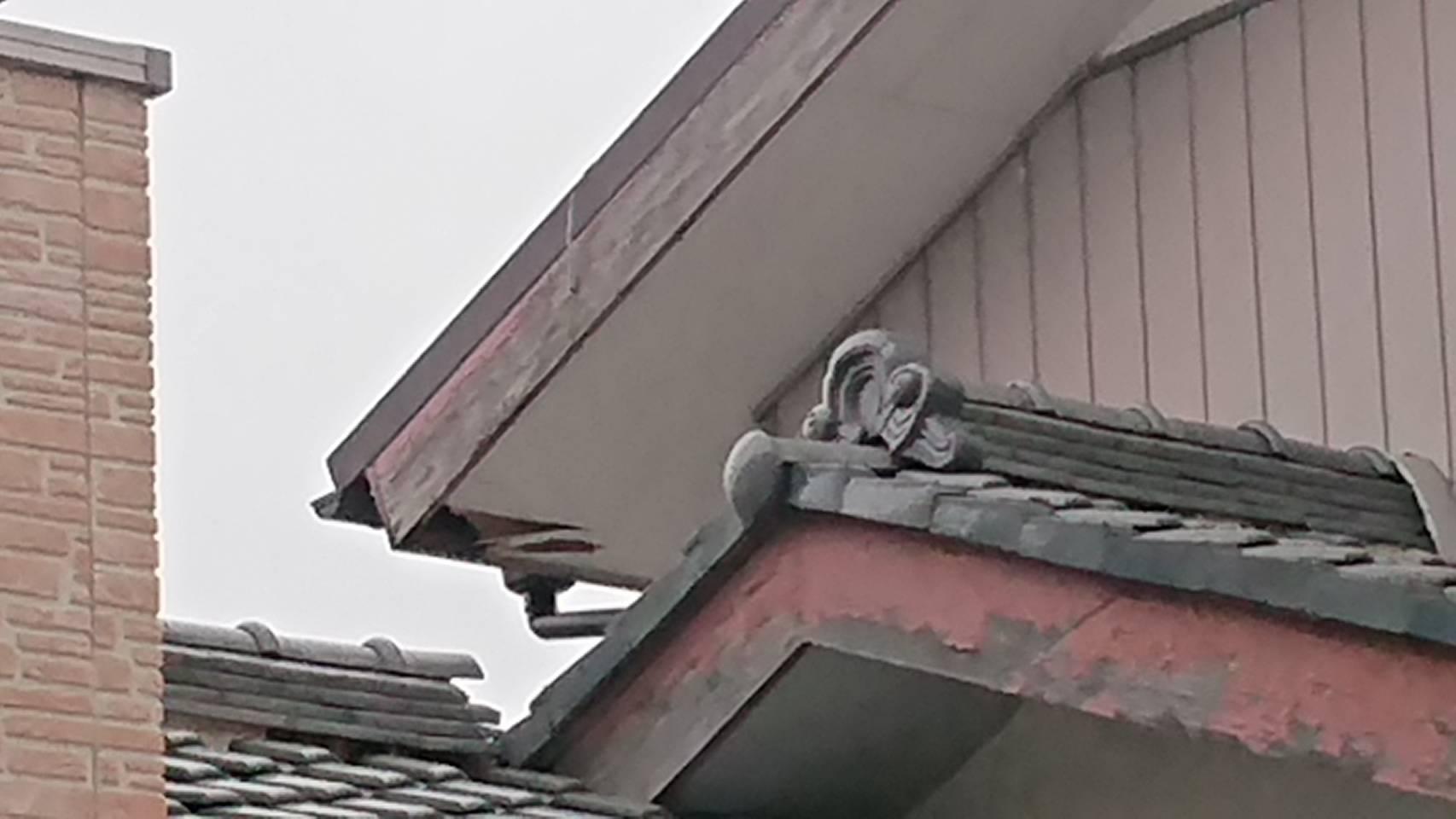 行田市で軒天の剥がれ、中に鳥の巣が!?現地調査です