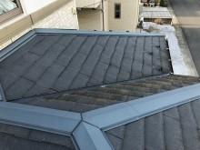 コケ 屋根