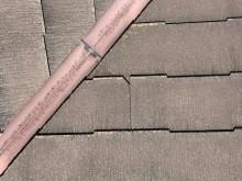 屋根 コケ ひび割れ