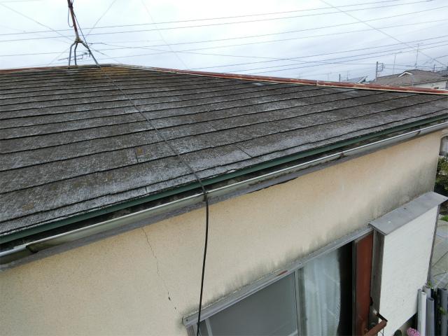 屋根の黒ずみ