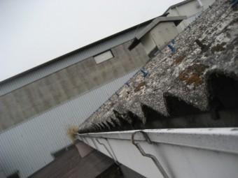 雨樋の留め具外れの写真
