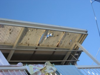 熊谷市 トタン屋根