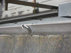 上尾市で雨樋の施工事例 写真
