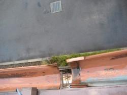 川越市で雨樋の施工事例