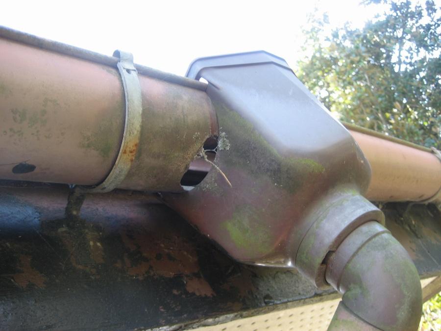 雨樋集水器破損の様子写真