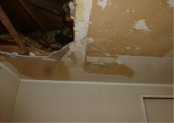 天井裏を壊し雨漏りを確認した写真